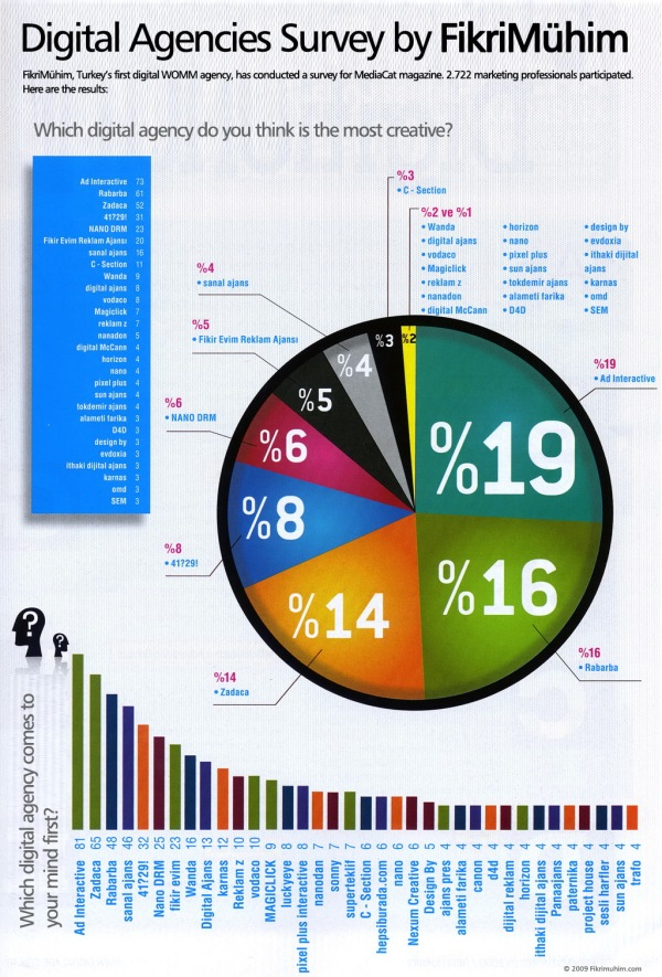 MediaCat's Digital Agency Survey by FikriMühim, 2009
